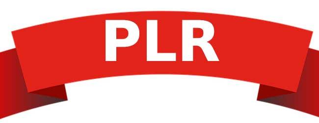 كيفية الربح من منتجات plr
